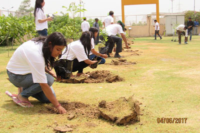 World Environment Day - June 2017